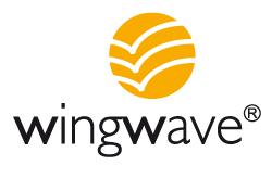 CTC-Academy-Coaching-Training-Consulting-Lehrgaenge-Ausbildung-wingwave-Logo